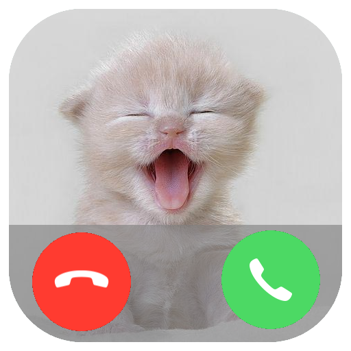 Fake Call from Pet Prank Calling – PlayGamesly